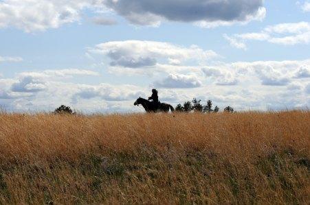 Lone Horse Rider
